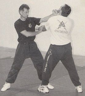 Fighting Ranges of Jeet Kune Do, Part 1