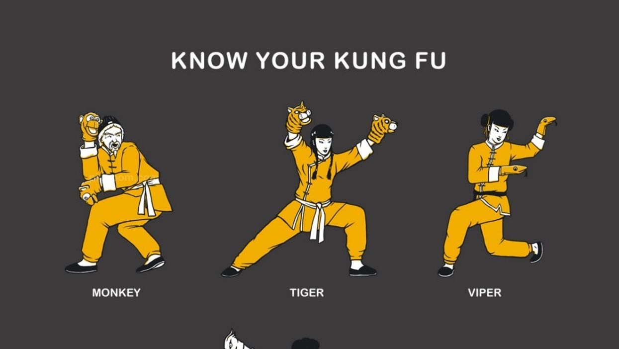 The 5 Kung Fu Animal Styles of the Chinese Martial Arts