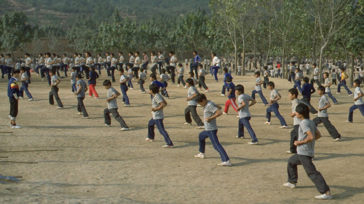 Kung Fu 101: Southern Fist in Action