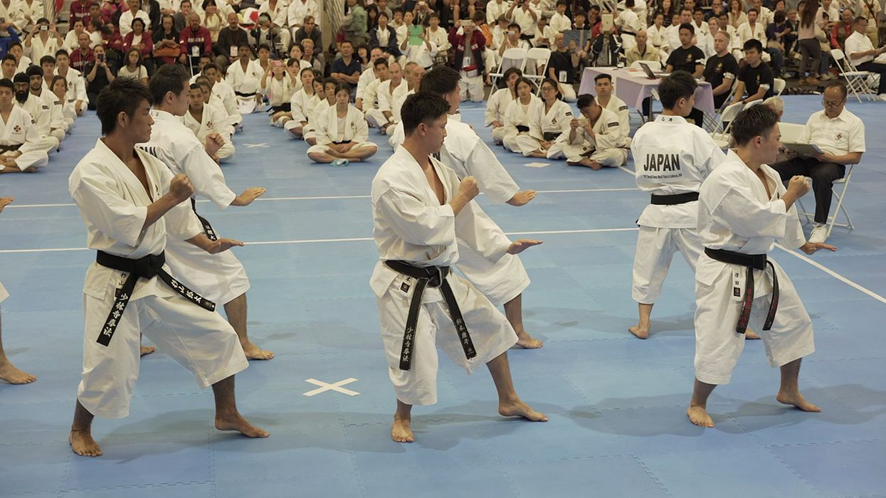 Shorinji Kempo: Shaolin Kung Fu's Kicking Cousin
