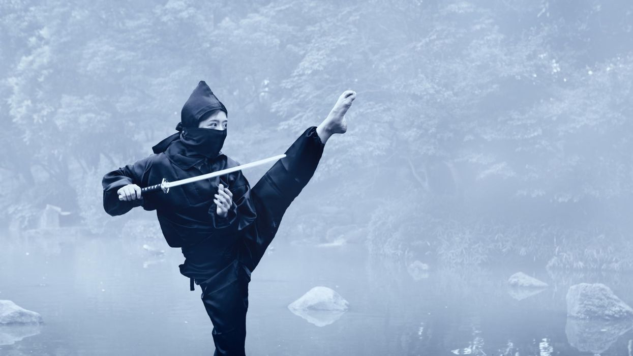 Ninja History 101: Spies and Assassins