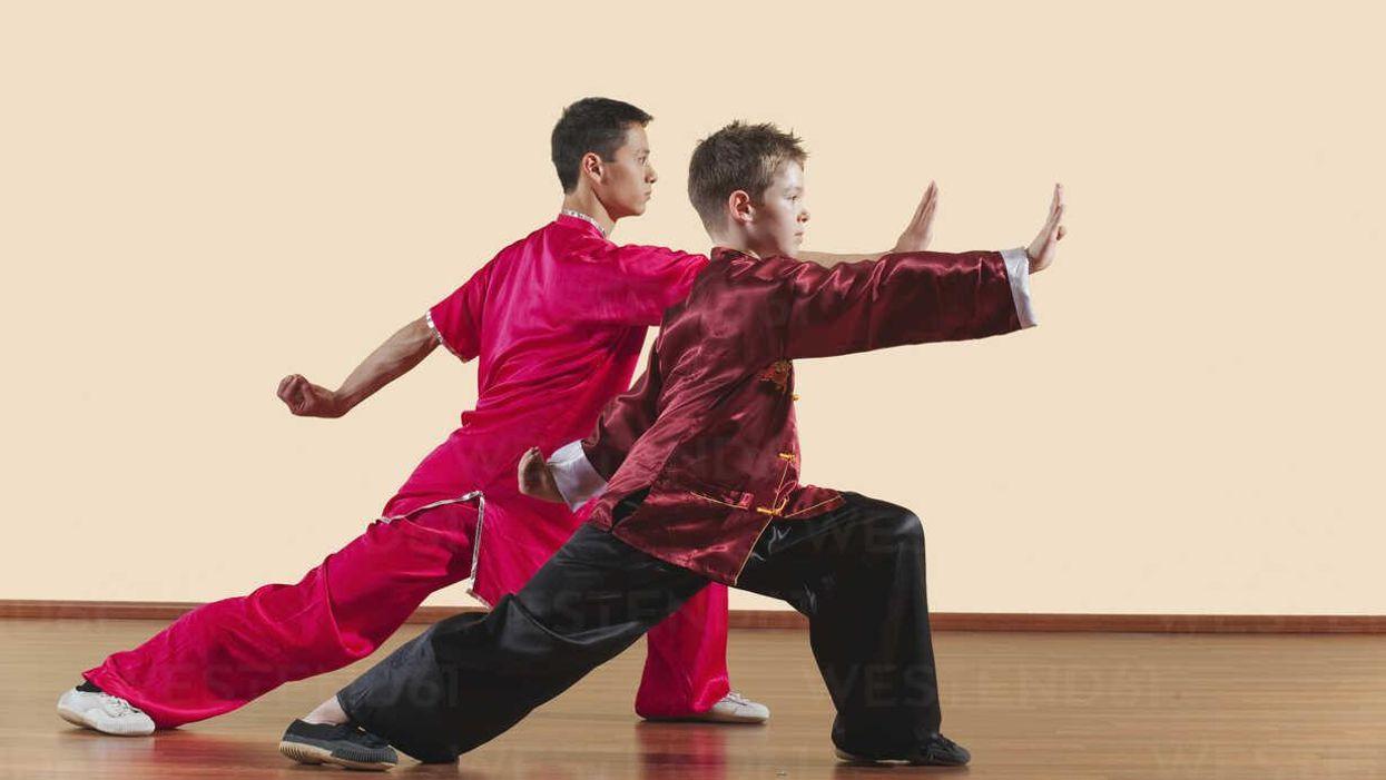 Kung Fu teacher